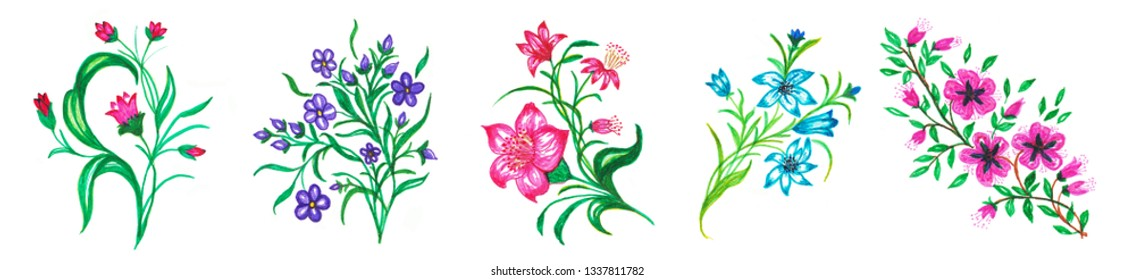 Set of 5 Flower Bouquets. Hand Drawn Illustration for Your Design.