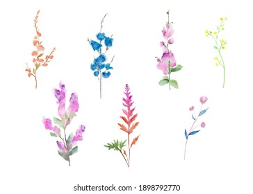 Set of abstract watercolor flowers on a white background.