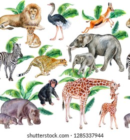 Set of african animals with tropical leaves isolated on white background. Illustration. Watercolor. Template. Close-up. Clip art. Hand drawn. Hand painted