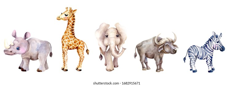 Set animals of Africa. Isolated object  on a white background. The picturesque watercolor illustrations. Bright colorful picture. A hand-drawn image.