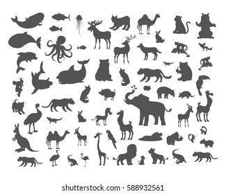 Set of animals silhouettes. Mammals, birds, fish, reptiles, amphibia, bats colection. Fauna of the world concept. Animals of North and South America, Europe, Africa, Asia, Australia.  icons