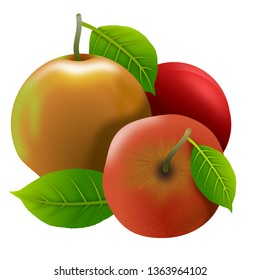 Set of apples and their leaves, isolated on white background. Illustration. Ideal to illustrate topics about fruits and healthy eating.