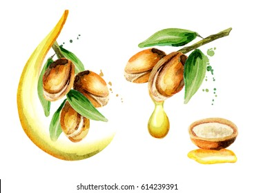 Set of argan oil compositions, can be used as a design element for the decoration of cosmetic or food products using argan oil. Hand-drawn watercolor sketch