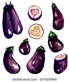Set of aubergines ( eggplants). Hand drawn watercolor painting isolated on white background.