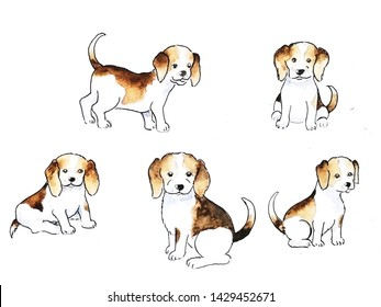 Set of beagle puppy doodles with watercolor style,hand drawn and painting on white background.