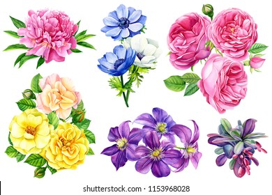 set beautiful bouquet of flowers, watercolor, botanical painting, greeting card, roses, barberry, anemones, yellow rose, clematis, peony