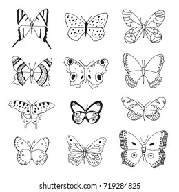 Set of beautiful butterflies line illustrations.