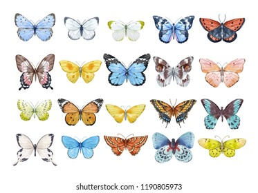 Set of beautiful watercolor butterflies.  blue, yellow, pink and red butterfly illustration.