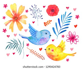 Set with birds couple and decorative plants, flowers and leaves.Watercolor hand drawn skech illustration isolated on white background