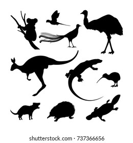 Set of black silhouettes of Australian animals. Kangaroo, koala and emu on a white background.