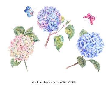 Set of blooming watercolor branch hydrangeas and butterflies. Summer design elements. Natural Botanical Illustration isolated on white background.