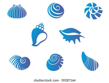 Set of blue seashells or logo template. Vector version also available