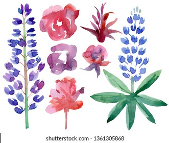 Set with bluebonnets and roses. Watercolor hand drawn illustration. Isolated on white background