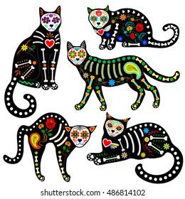 Dead Cat Images Stock Photos Vectors Shutterstock