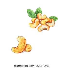A set of cashew nut isolated on white background , Watercolor painting.