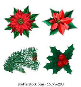set of christmas decorations christmas flower poinsettia and holly and fir tree branch with