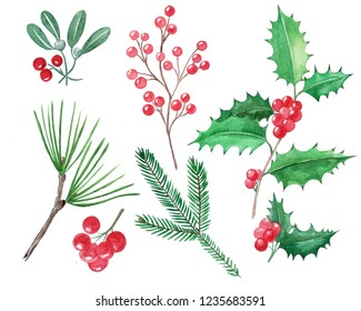 Set of Christmas elements, red berries, holly,  misletoe, hand drawn illustration, watercolor, isolated