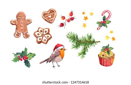 Set of Christmas elements - robin bird, ginger cookies, gingerbread man, candy cane, christmas tree branches, christmas tree branches mistletoe. Watercolor for New Year, xmas design