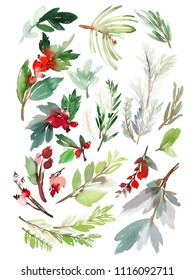 A set of Christmas floral elements on a white background