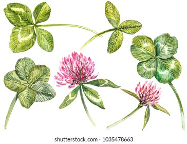 A set of clover red flowers and leaves - four-leafed and trefoil. Watercolor botanical illustration. Design element Happy Saint Patricks Day