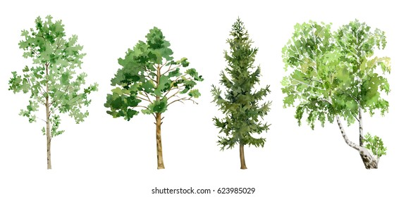 Set collection clipboard arrangement of hand painted drawn watercolor cliparts of trees