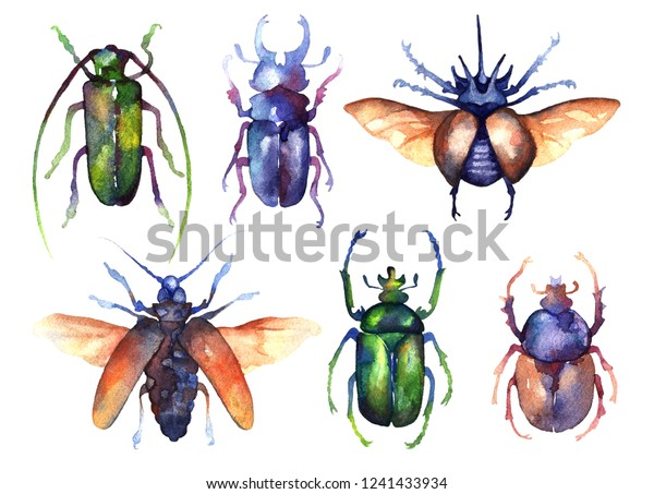 Set of colored watercolor beetles isolated on a white background. Cockchafer, stag beetle, elephant beetle. Bugs, insects, entomology.