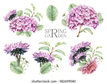 Set of compositions with spring flowers and plants drawn by hand with crayons. Painted by hand with colored pencils illustration isolated on white background. Romantic vintage style