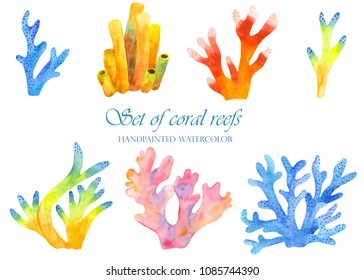A set of coral reefs in watercolor. Marine multicolored coral underwater corals on a white background.