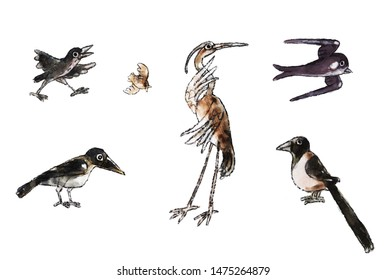 set of cute different birds: heron, magpie, crow, sparrow, swallow, isolated image, object, watercolor, illustration