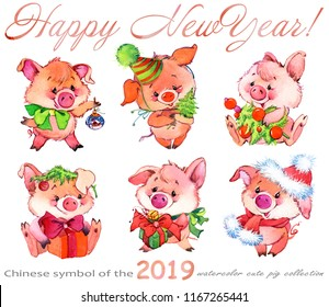 Set of cute pig cartoon characters. Happy New Year. watercolor funny piglet illustration. Chinese symbol of the 2019 year.