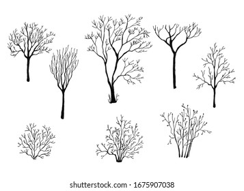 Set of different bare trees for your design. Ink on white background. Hand drawn illustration.