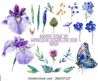 Set of different blue, lilac flowers for design. Watercolor irises, cornflower, wildflowers, leaves, berry, butterfly