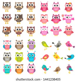 Set of different kinds of birds and owls. Raster version