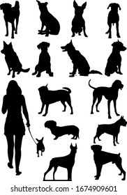 Set of dogs silhouette. Color illustration