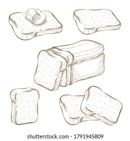 set of drawn sliced bread and toasts illustration isolated on white. wheat rye or whole grain square loaf with various bread slices. sandwich icons collection. vintage engraved sketch. clip art