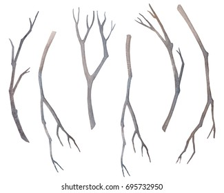 Set dry tree branches isolated not a white background.