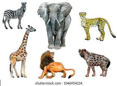 Set of eatercolor animals isolated on white.