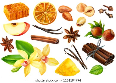 set of elements from a vanilla flower, anise, dry orange slice, honey, nut, almonds, apple, carnation and cinnamon sticks on isolated white background, watercolor illustration, hand drawing