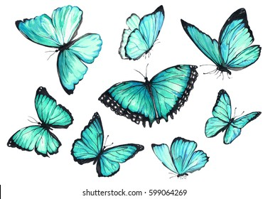 A set of flying turquoise butterflies. Watercolor illustration