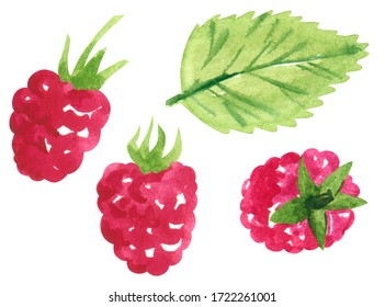 Set of garden red berries, sweet raspberry, hand drawn botanical watercolor illustration isolated on white.
