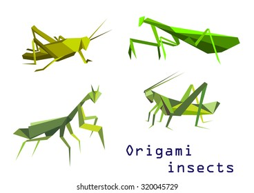 Set of green origami insects with a grasshopper, praying mantis, mantis and locust, side view colorful cartoon illustration