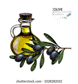 set of hair care ingredients. Organic hand drawn elements. Farm market vegetables. Colored black olive branch, bottle.