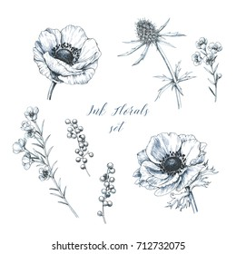 Set of hand drawn anemones. Isolated outline flowers against white background.