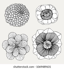 set hand drawn beautiful flower raster copy