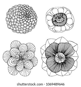 set hand drawn beautiful flower coloring page, raster copy