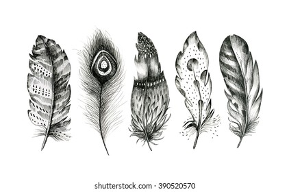 Set of hand drawn bird feathers isolated on white background. Boho decoration allegory black pen sign. Graphic drawing line symbol element.