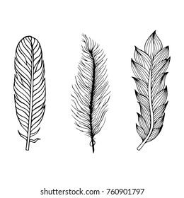 Set of hand drawn feathers on the isolated background.  illustration.