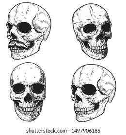 Set of hand drawn human skulls. Design element for poster, t shirt, card, banner, flyer. Vector illustratio