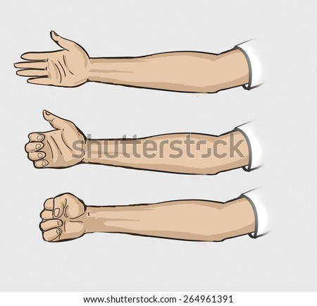 From The Shoulder To Wrist Drawn Human Hand Compressed And Decompressed Palms