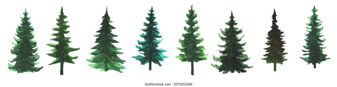 Set of hand painted watercolor pine tree silhouettes illustrations isolated on white background.